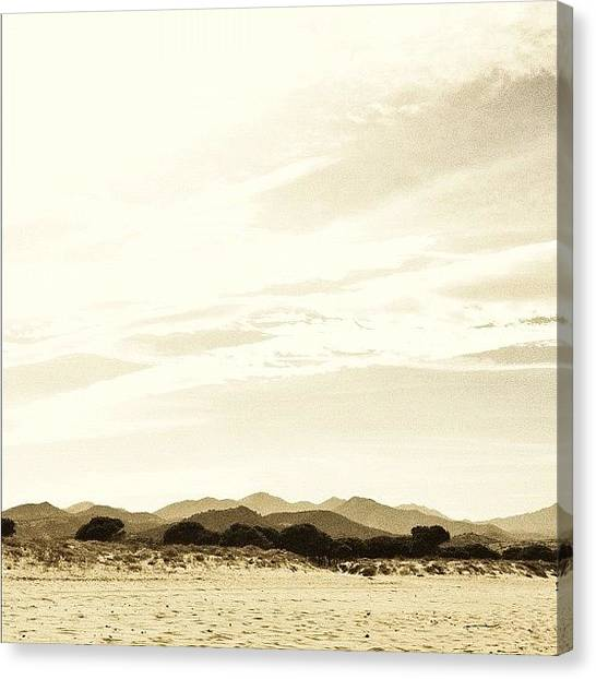 Sahara Desert Canvas Print - Looks Like #desert But It's Not! #lol by Max Guzzo