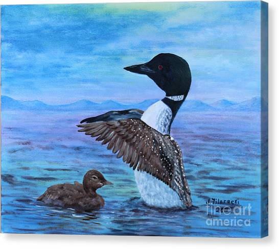 Loon Mother And Baby Canvas Print