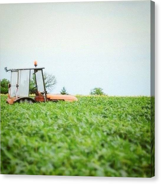 Tractors Canvas Print - Lost #field #tractor #nature by Val Lao