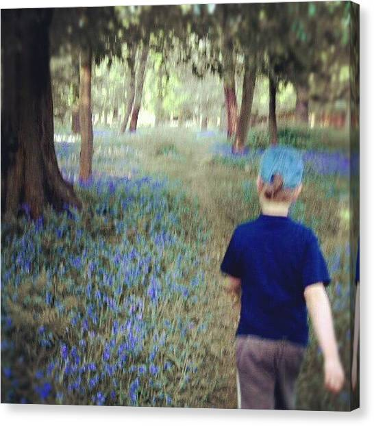 Forest Paths Canvas Print - Lost In A #bluebell #wood ... #blur by Alexandra Cook