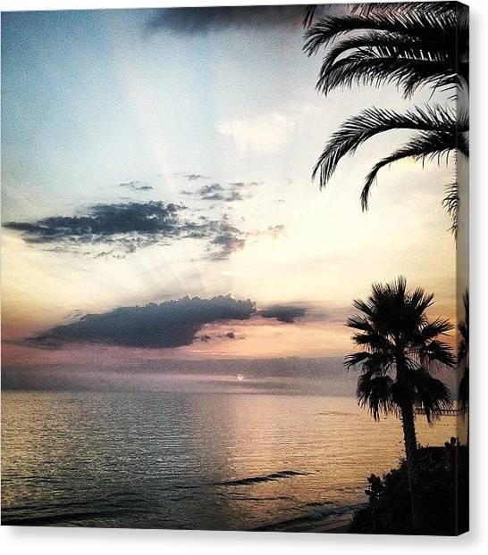 Palm Trees Sunsets Canvas Print - Lost Winds  by Kyle Krone