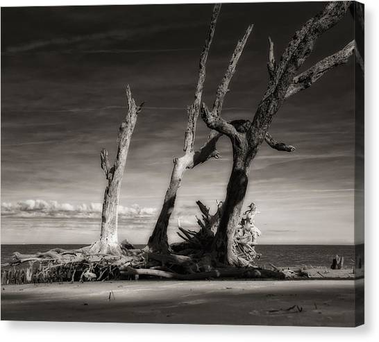 Lost World Canvas Print