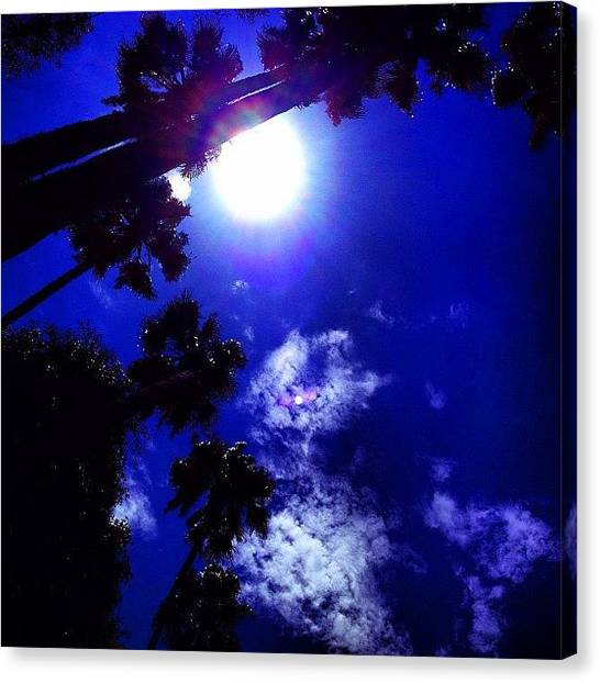 Lounge Canvas Print - #lounging By The #pool #losangeles #la by Ray Jay