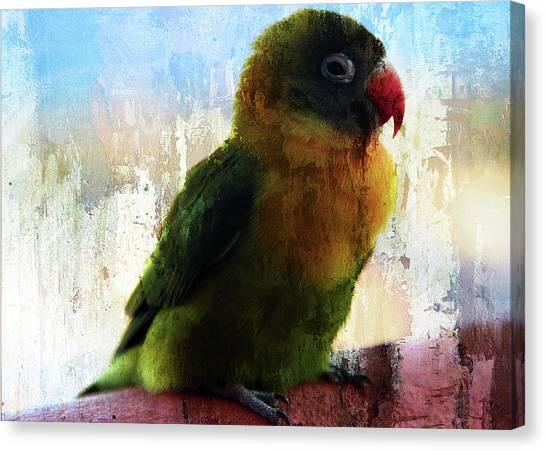 Lovbird Canvas Print