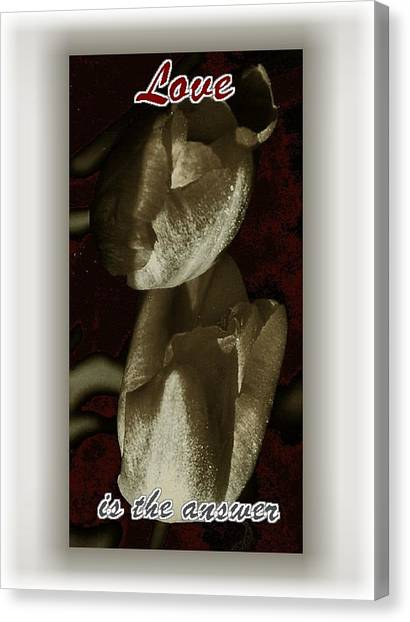 Love Canvas Print by Lynne and Don Wright