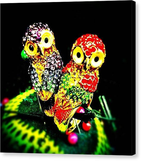 Owls Canvas Print - Lovely Owl Rings From Bangkok. Thanks by Beatrice Looi