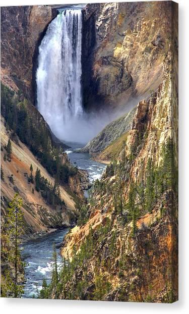 Lower Yellowstone Falls Photograph By Brad Scott