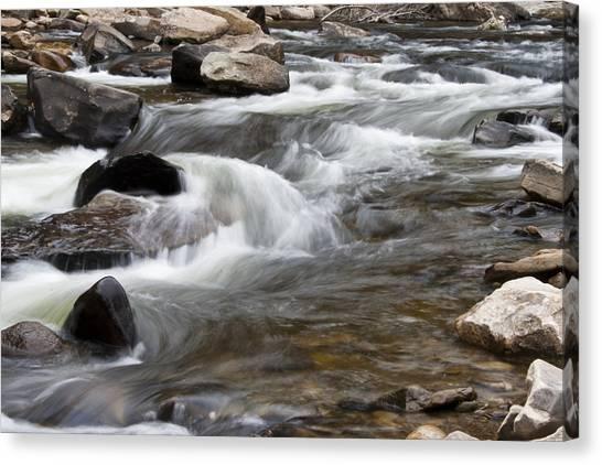 Loyalsock Creek Gentle Rapids Canvas Print