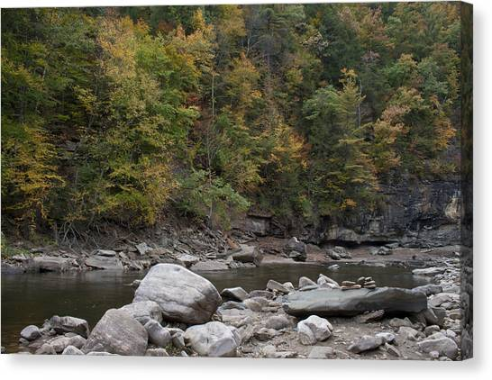 Loyalsock Creek Worlds End State Park Canvas Print