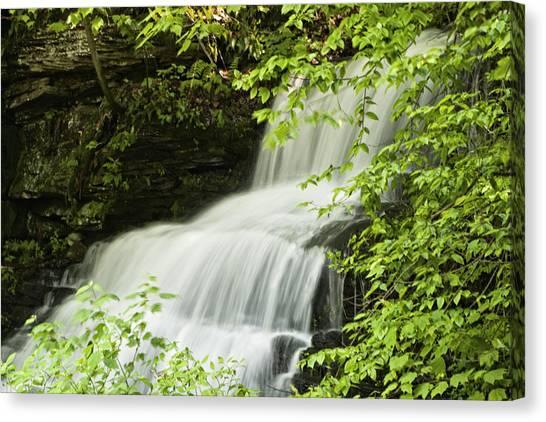Loyalsock Waterfall Canvas Print