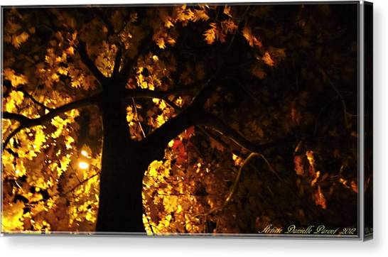 Luminous Deciduous Canvas Print