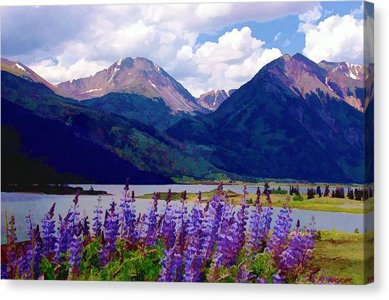 Lupine Lake Canvas Print
