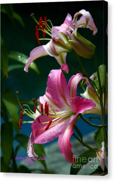 Lushes Fragrant Lilies Canvas Print