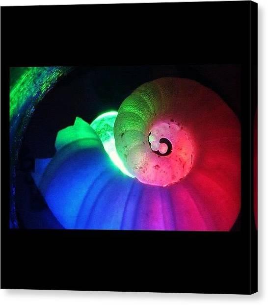 Seashells Canvas Print - #macro #macrolover #shells #seashell by Rhiannon G-h
