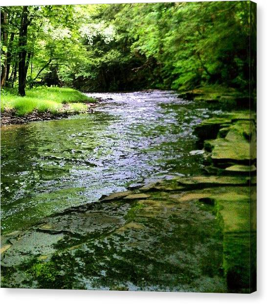Fishing Canvas Print - Mad River  by Dan Piraino