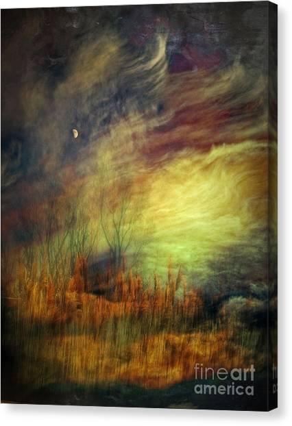 Magical Woods Canvas Print by Emilio Lovisa