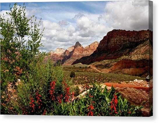 Magnificent Vistas In Zion Canvas Print