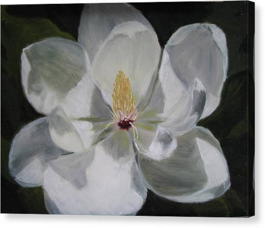 Magnolia Canvas Print by Iris Nazario Dziadul