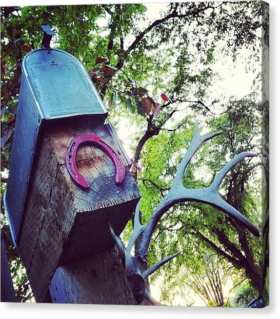 Hunting Canvas Print - #mail #mailbox #horse #horseshoe #trees by Sam Sana