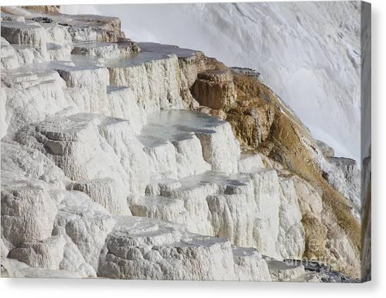 Yellowstone Caldera Canvas Print - Main Travertine Sinter Terrace. Mammoth by Richard Roscoe