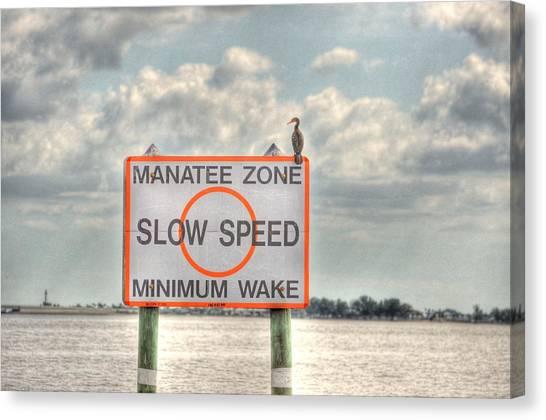 Manatee Zone Canvas Print by Barry R Jones Jr