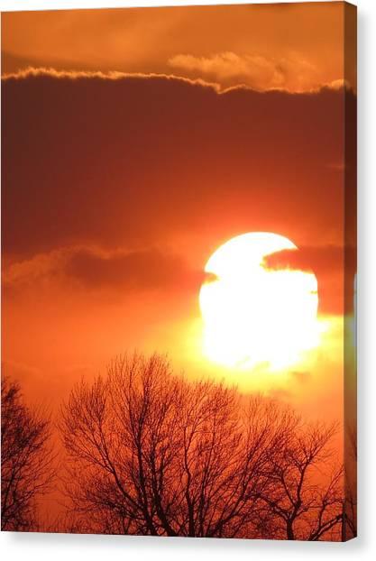 Mango Sunset Kansas Tree Silhouette Canvas Print