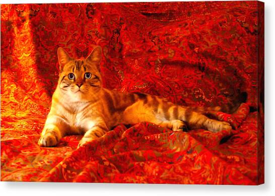 Manx Cats Canvas Print - Marble Royale by Kathleen Horner