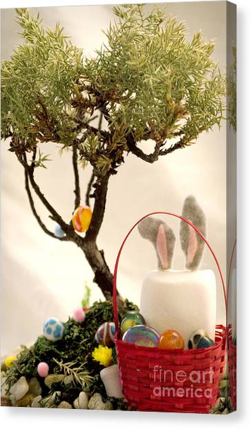 Easter Baskets Canvas Print - Marshmallow Bunny by Heather Applegate