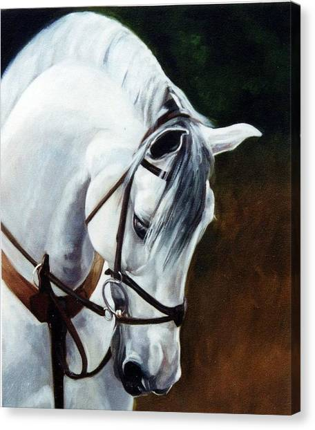 Ponies Canvas Print - Martingale by Janet  Crawford