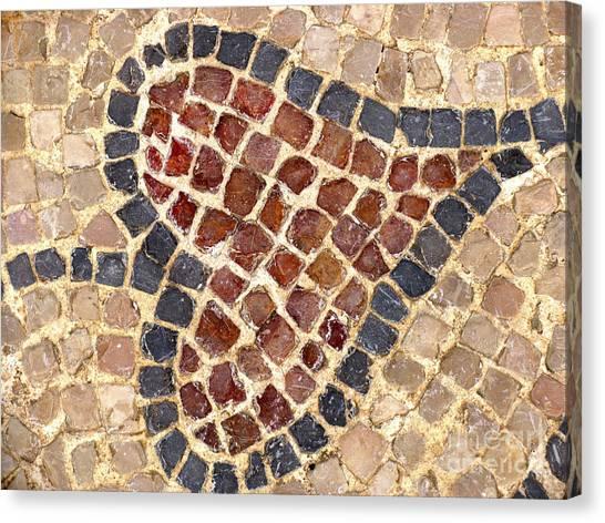 Masada Leaf Canvas Print