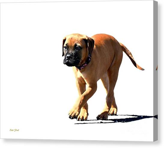 Me And My Shadow 5 Canvas Print