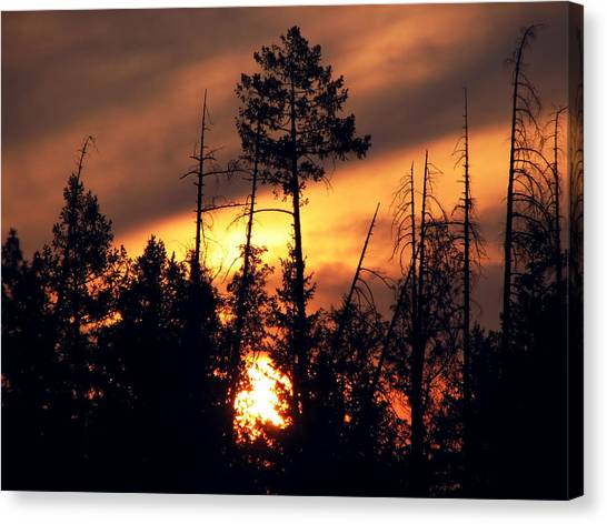 Melting Skies Canvas Print