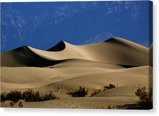 Mesquite Dunes At Death Valley Canvas Print