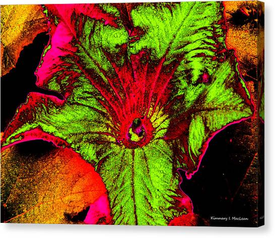 Ebsq Digital Canvas Print - Metallic Pumpkin Flower by Kimmary MacLean