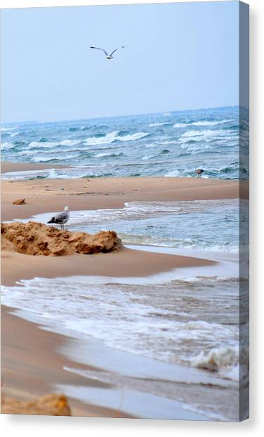 Michigan Seashore Canvas Print by Tina Karle