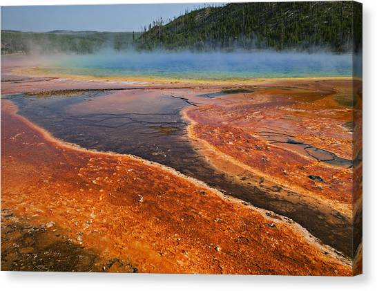Yellowstone National Park Canvas Print - Middle Hot Springs Yellowstone by Garry Gay