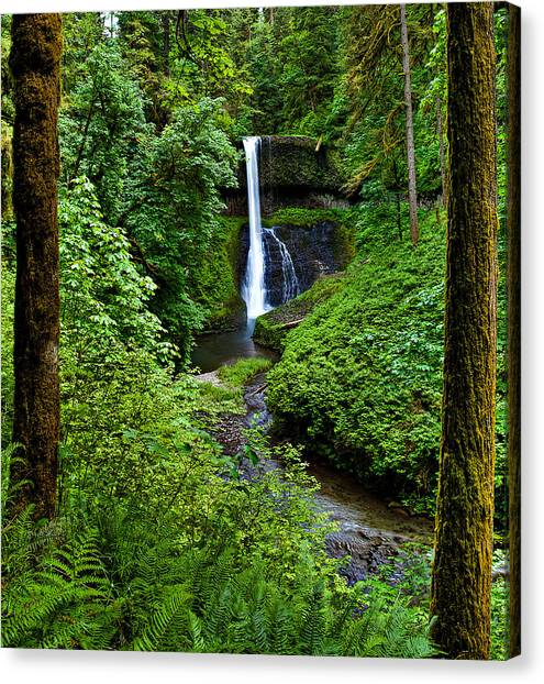 Middle North Falls Canvas Print