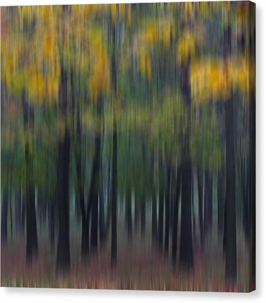 Midwest Autumn Canvas Print