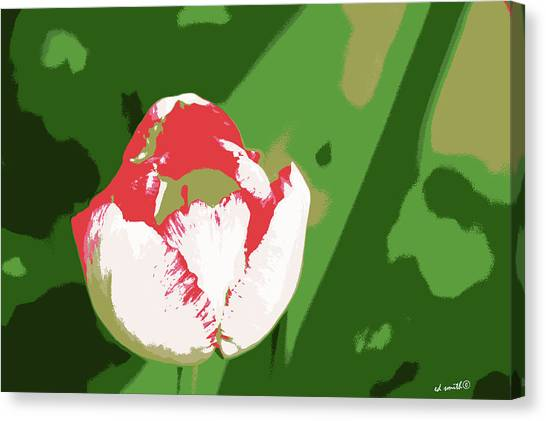 Pink Camo Canvas Print - Military Mistress by Ed Smith