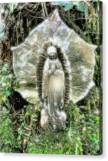 Miracle In My Garden Canvas Print