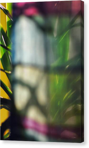 Mirage Canvas Print by Marisa Matis