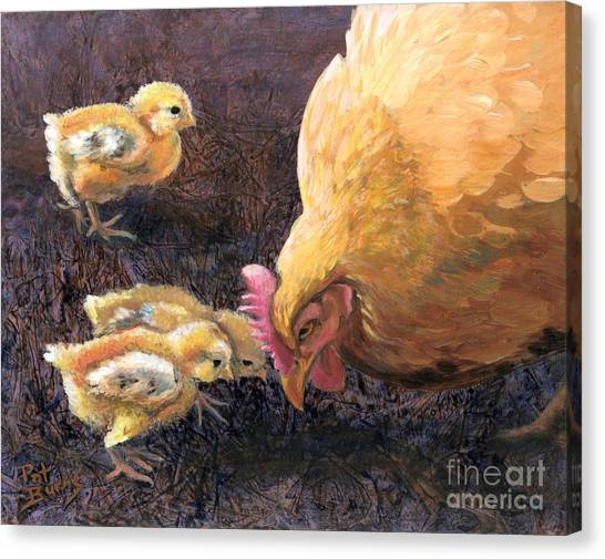 Miss Peck With Chicks Canvas Print