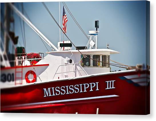 Mississippi IIi Canvas Print