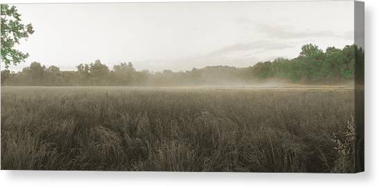 Misty Grounds Canvas Print by Jan W Faul