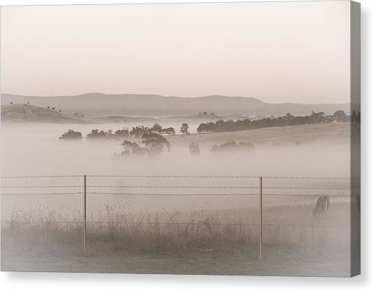 Misty Morning In The Country 2 Canvas Print