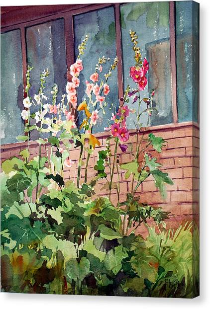Mixed Hollyhock Canvas Print by Peter Sit