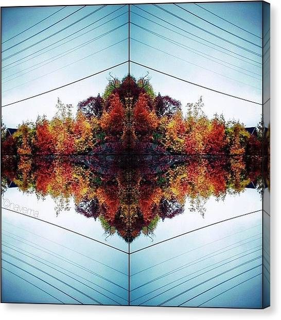 Symmetrical Canvas Print - Modern Muskokan Mandala by Natasha Marco