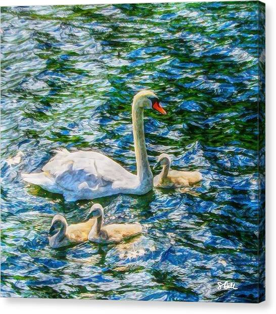 Swans Canvas Print - Momma Swan And Babies On Loch Ness by Sue Hall