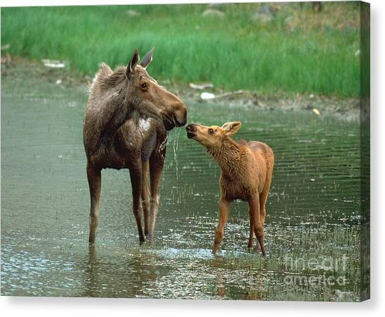 Mommy And Me Canvas Print