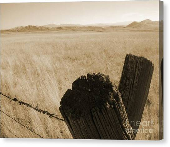 Montana Vista Canvas Print